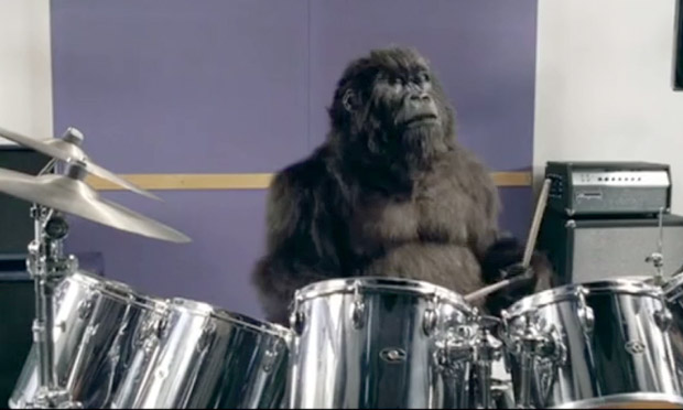 Cadbury gorilla ad